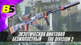 Экзотическая винтовка (Безжалостный) The division 2